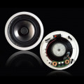 "In-Ceiling Speaker - 8"" 2-Way"