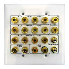 Double Gang Home Theater Patching Wall Plate